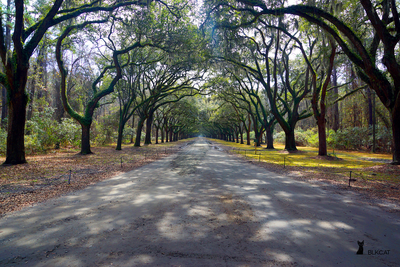 Wormsloe-Historic-Site